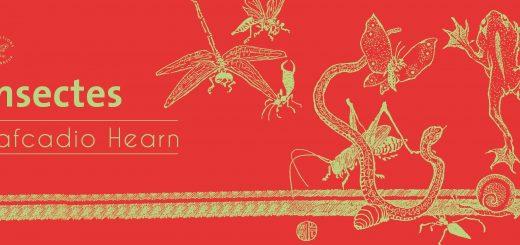 Couverture Insectes de Lafcadio Hearn. Crédits : Les Éditions du Sonneur (http://www.editionsdusonneur.com)